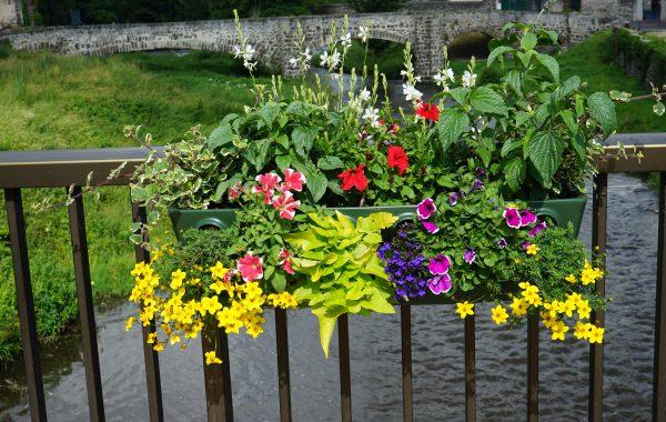 Bacs à fleurs